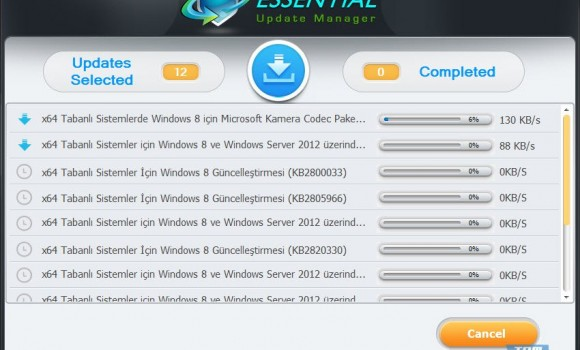 Essential Update Manager Ekran Görüntüleri - 1