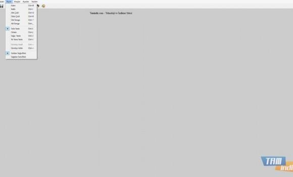 FocusWriter Ekran Görüntüleri - 1