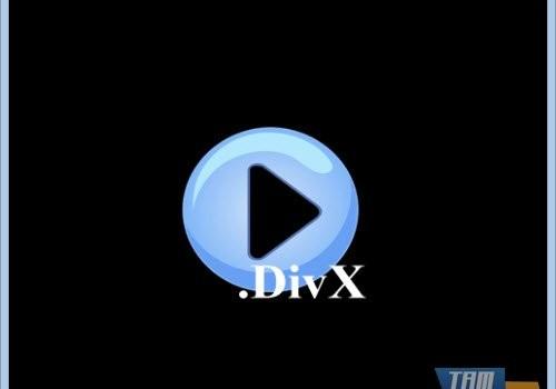 Free DivX Player Ekran Görüntüleri - 1
