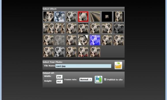 Free Gif Effect Ekran Görüntüleri - 4