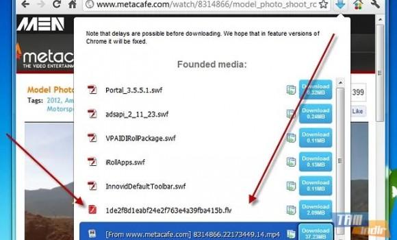 FVD Video Downloader Ekran Görüntüleri - 1