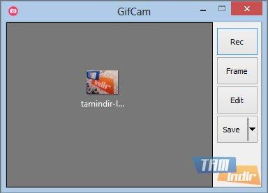 GifCam Ekran Görüntüleri - 1