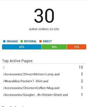 Google Analytics Ekran Görüntüleri - 4