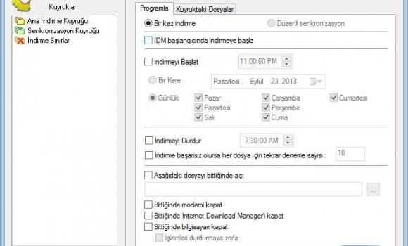 Internet Download Manager Ekran Görüntüleri - 2