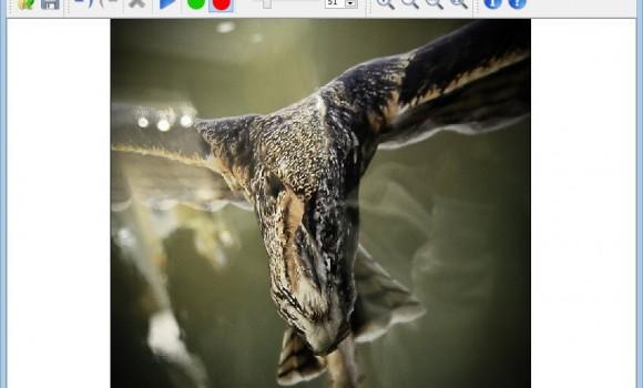 iResizer Ekran Görüntüleri - 1