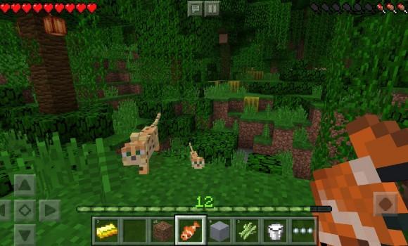 Minecraft: Pocket Edition Ekran Görüntüleri - 3