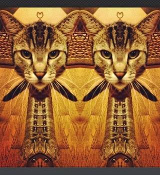 Mirrorgram Ekran Görüntüleri - 2