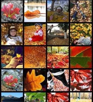 Photobucket Ekran Görüntüleri - 2
