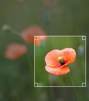 QuickPic Ekran Görüntüleri - 2