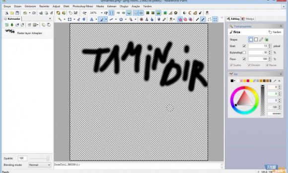 RealWorld Paint Ekran Görüntüleri - 4