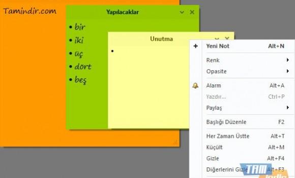 Simple Sticky Notes Ekran Görüntüleri - 2