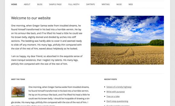 WordPress Türkçe Ekran Görüntüleri - 3