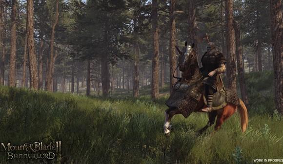 Mount & Blade II: Bannerlord Ekran Görüntüleri - 3