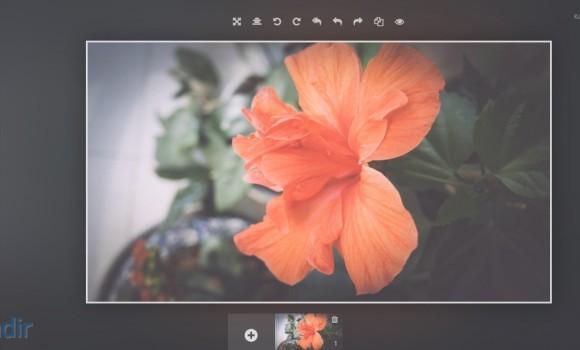 Polarr Photo Editor Ekran Görüntüleri - 1