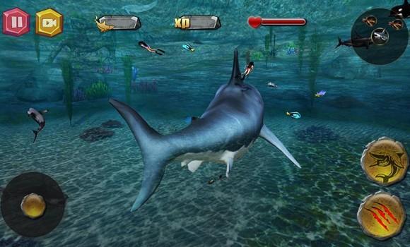 Shark.io Ekran Görüntüleri - 5