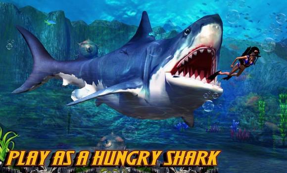 Shark.io Ekran Görüntüleri - 4
