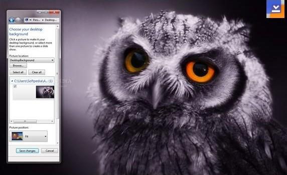 Night Owl Teması Ekran Görüntüleri - 1