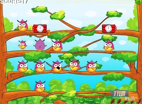 Birdzy Free Ekran Görüntüleri - 2