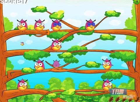 Birdzy Free Ekran Görüntüleri - 3