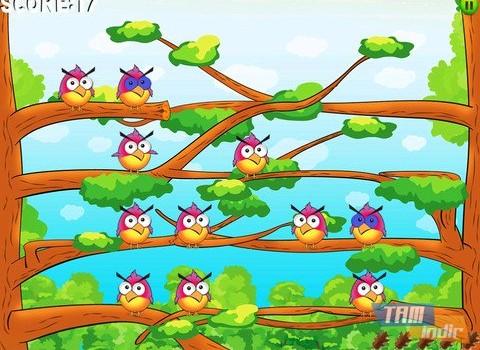 Birdzy Free Ekran Görüntüleri - 4