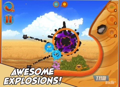 Bombcats Ekran Görüntüleri - 4