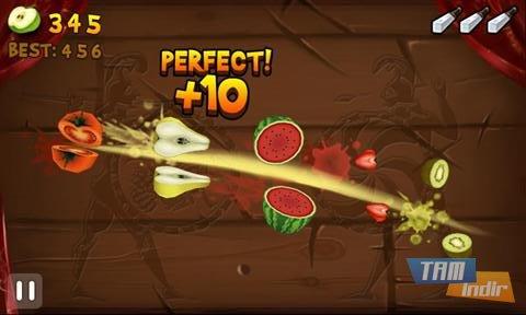 Fruit Slice Ekran Görüntüleri - 1