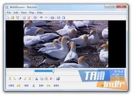 Machete Lite Ekran Görüntüleri - 3