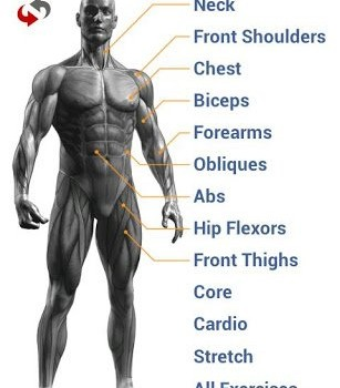 Gymrat: Workout Planner & Log Ekran Görüntüleri - 5