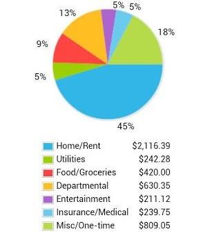 Home Budget Ekran Görüntüleri - 5