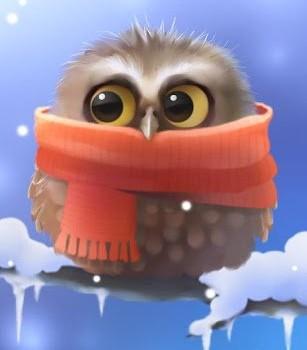 Little Owl Lite Ekran Görüntüleri - 1