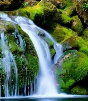 Nature Sounds Relax and Sleep Ekran Görüntüleri - 3