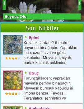 Şifalı Bitkiler - Doğal Tedavi - Şifalı Otlar Ekran Görüntüleri - 3