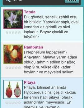 Şifalı Bitkiler - Doğal Tedavi - Şifalı Otlar Ekran Görüntüleri - 1