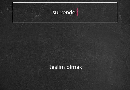 Dilsem YDS Kelime Ezberleme Ekran Görüntüleri - 2