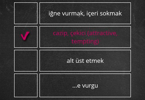 Dilsem YDS Kelime Ezberleme Ekran Görüntüleri - 1