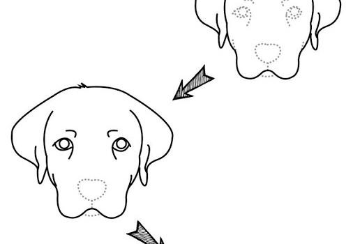 Draw Animal Ekran Görüntüleri - 3