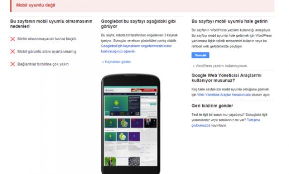 Google Mobil Uyumluluk Testi Ekran Görüntüleri - 1