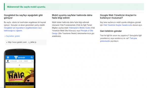 Google Mobil Uyumluluk Testi Ekran Görüntüleri - 2