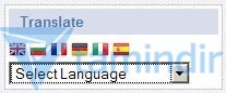 GTranslate Ekran Görüntüleri - 1