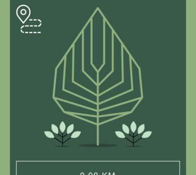 Jotun Yeşil Adımlar Ekran Görüntüleri - 4