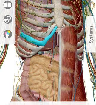 Human Anatomy Atlas Ekran Görüntüleri - 5