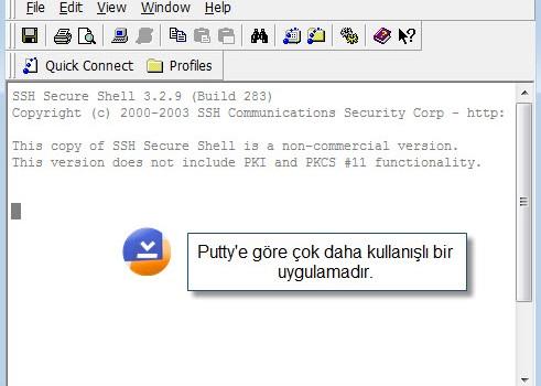 SSH Secure Shell Client Ekran Görüntüleri - 1
