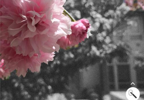 Adobe Photoshop Mix Ekran Görüntüleri - 1