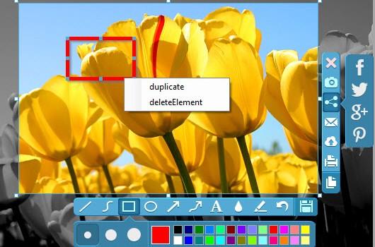 Apowersoft Free Screen Capture Ekran Görüntüleri - 3