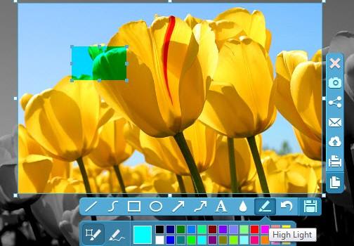 Apowersoft Free Screen Capture Ekran Görüntüleri - 2