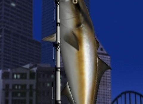 Big Night Fishing 3D Lite Ekran Görüntüleri - 3