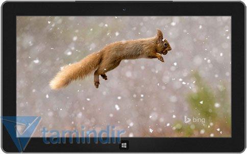 Bing Yıldönümü Teması Ekran Görüntüleri - 1