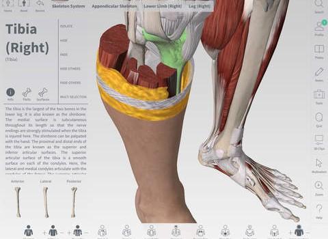 Complete Anatomy Ekran Görüntüleri - 4