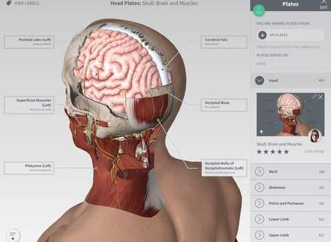 Complete Anatomy Ekran Görüntüleri - 3