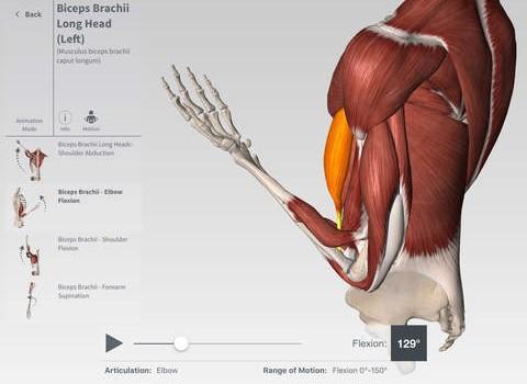 Complete Anatomy Ekran Görüntüleri - 2
